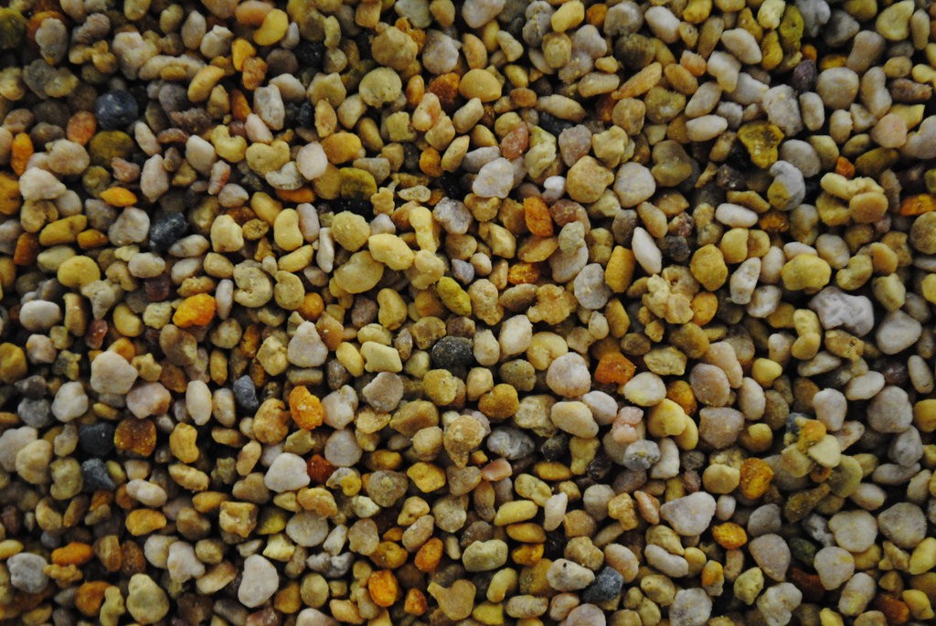 Bee Pollen Superfood