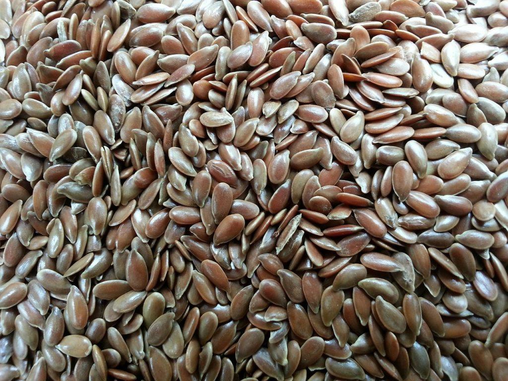 Flex Seed ALA